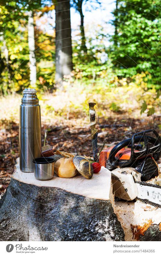 Frühstückspause Natur Baum Wald Herbst Essen natürlich Lebensmittel Arbeit & Erwerbstätigkeit Ernährung Schönes Wetter Pause Kaffee Landwirtschaft Backwaren