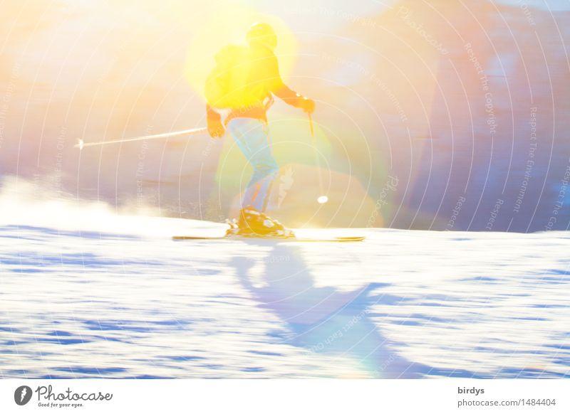 ski alpin Lifestyle Stil Ferien & Urlaub & Reisen Tourismus Winter Schnee Winterurlaub Wintersport Skifahren Skipiste maskulin Junge Frau Jugendliche 1 Mensch