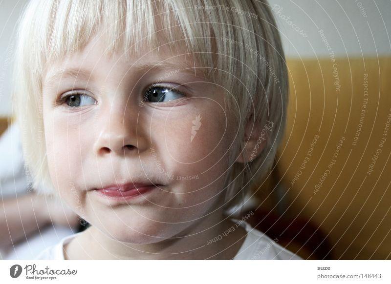 Augenblick schön Haare & Frisuren Gesicht Mensch Kind Mädchen Kindheit Kopf 1 3-8 Jahre blond kurzhaarig beobachten Denken Blick klein natürlich Neugier