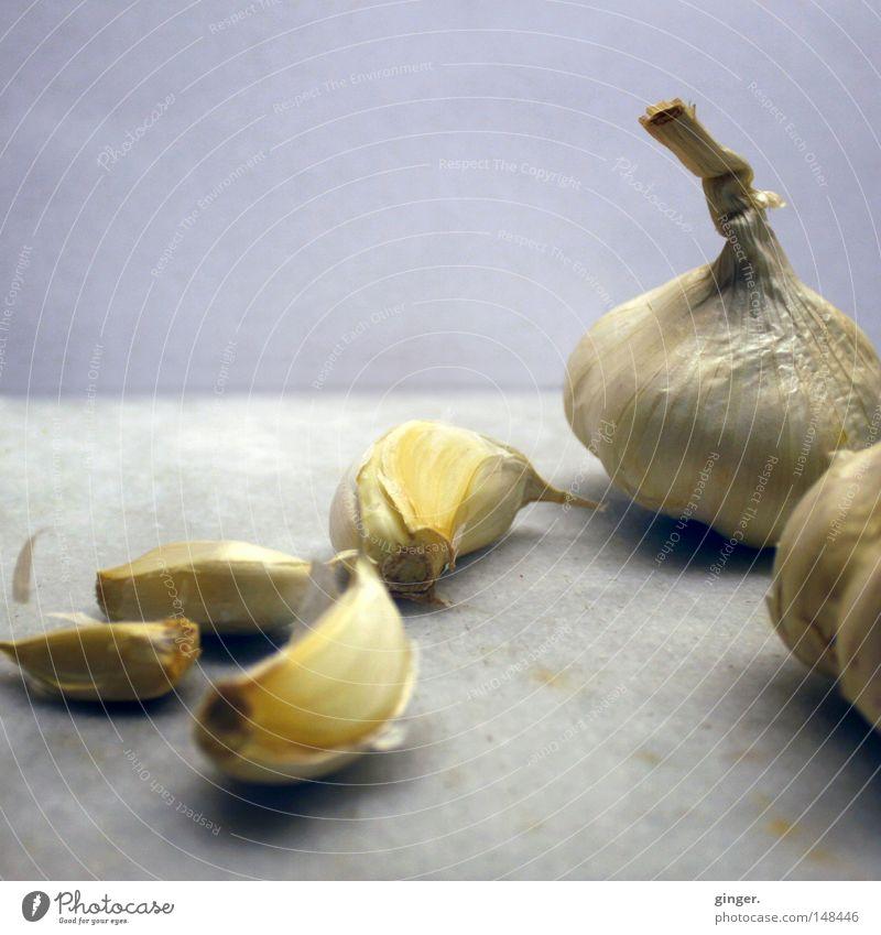 Gesund, lecker und hilft gegen Vampire weiß grau Gesundheit Kochen & Garen & Backen lecker Geruch Mahlzeit Zehen Gemüse Zwiebel Heilpflanzen streng angenehm herzhaft Würzig Knoblauch