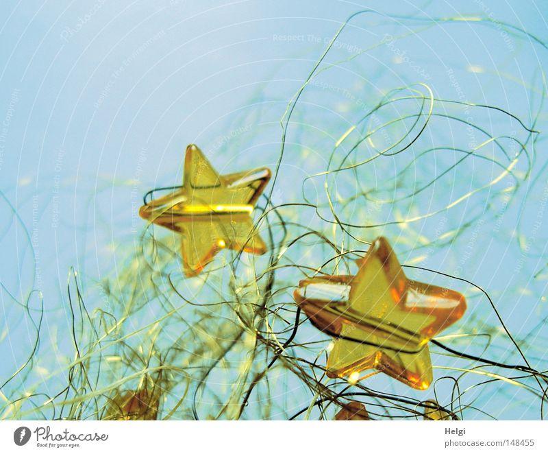 gelbe Glassterne in goldenem Draht vor blauem Hintergrund Stern (Symbol) Weihnachten & Advent Feste & Feiern Dekoration & Verzierung verschönern festlich