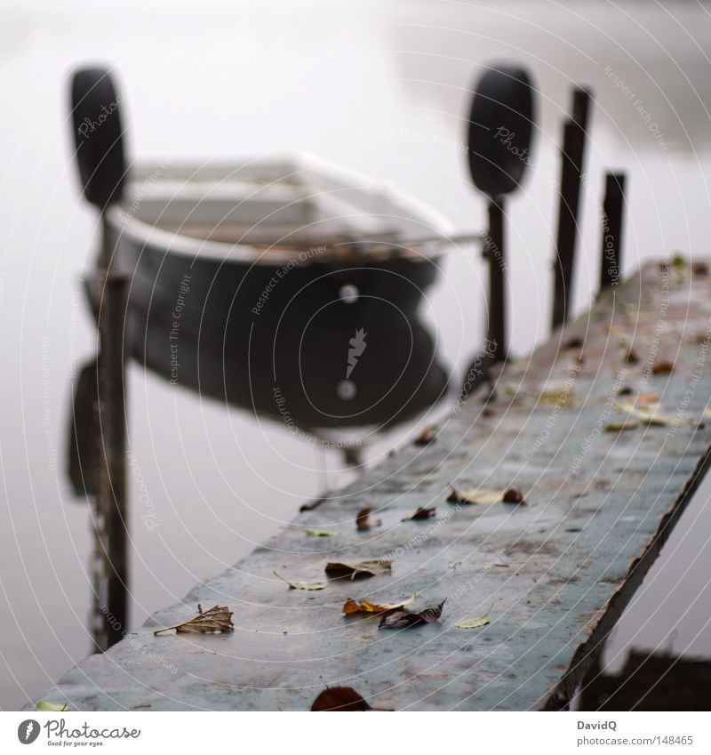 am steg Wasser ruhig Blatt dunkel kalt Erholung Herbst grau See Eis Wasserfahrzeug Nebel Wassertropfen Seil Frieden Hafen