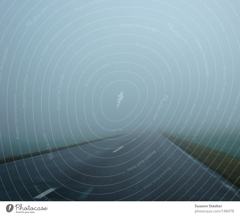 Straße ins Nirgendwo Farbfoto Menschenleer Morgen Morgendämmerung Dämmerung Ferne Nebel Wiese Verkehrswege fahren Geschwindigkeit Tod Begrenzung Asphalt Unfall
