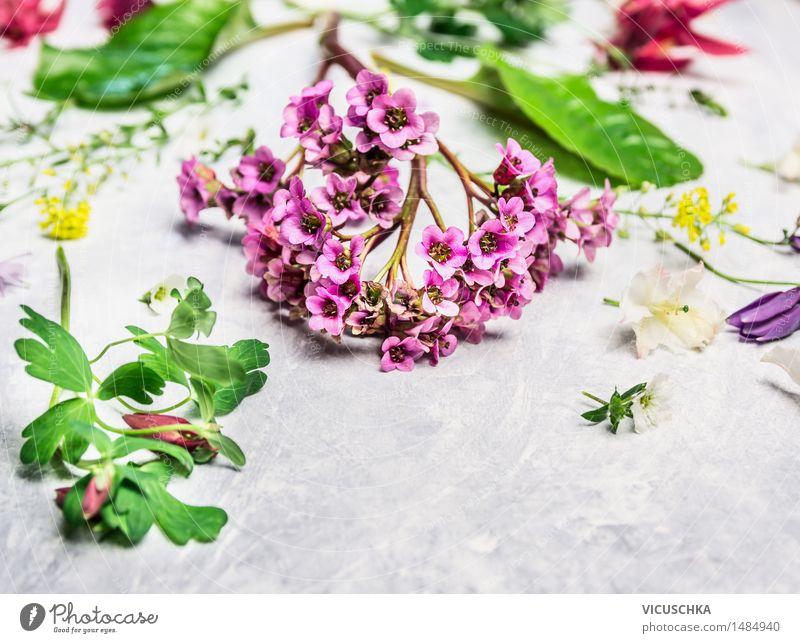 Frühling Pflanzen und Blumen aus dem Garten Stil Design Freizeit & Hobby Sommer Dekoration & Verzierung Tisch Natur Blumenstrauß Blühend rosa Floristik