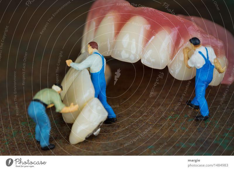 Miniaturwelten - Zahnreinigung Putzkolonne Mensch Mann blau Erwachsene Essen Gesundheit Gesundheitswesen braun rosa Arbeit & Erwerbstätigkeit maskulin Ernährung