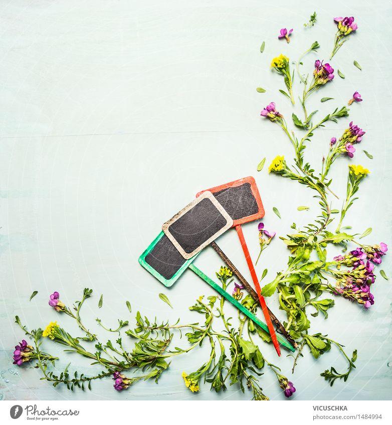 Frühling oder Sommer Pflanzen mit drei Gartenschild Design Natur Blume Blatt Blüte Grünpflanze Wildpflanze Holz Stil Hintergrundbild Schilder & Markierungen