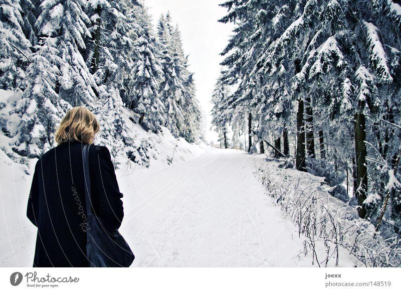 Frei laufen Frau Himmel Natur Winter Einsamkeit Wolken ruhig Wald Ferne dunkel kalt Schnee Denken gehen Angst laufen