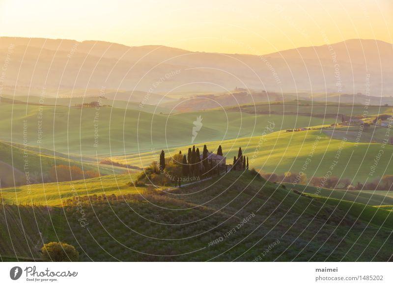 Bauernhaus in der Toskana vor einem Sonnenaufgang Panorama Haus Natur Landschaft Wolkenloser Himmel Baum Wiese Feld Hügel blau grün Idylle Ferne bauernhaus