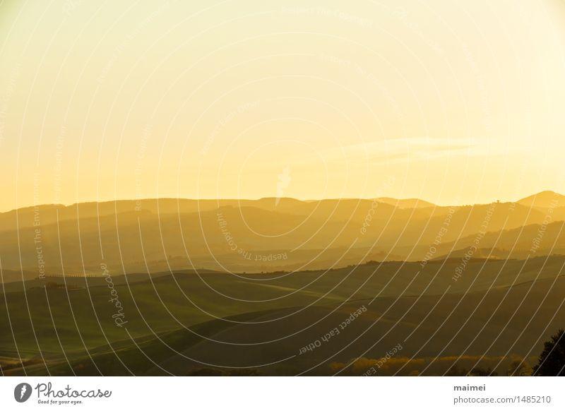 Hügellandschaft der Toskana vor Sonnenaufgang Ferien & Urlaub & Reisen Landschaft Himmel Wolkenloser Himmel Sonnenuntergang Frühling Baum Feld gelb gold grün
