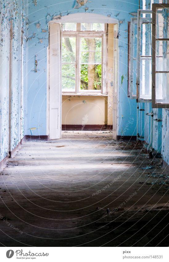 Durchzug alt blau grün Baum Blatt Fenster Wand Architektur Farbstoff hell Hintergrundbild Häusliches Leben Vergänglichkeit Ende streichen verfallen