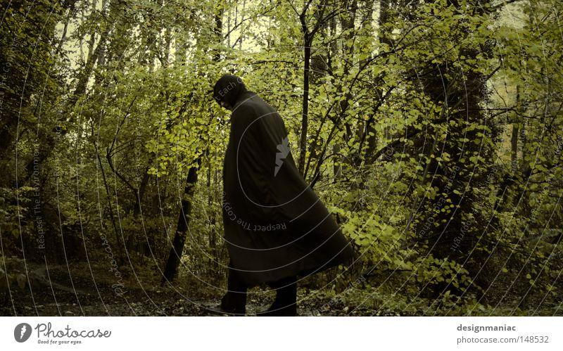 Nazgûl Mensch Natur Ferien & Urlaub & Reisen Mann grün Baum Blatt dunkel Wald schwarz kalt Herbst Wege & Pfade braun gehen frisch