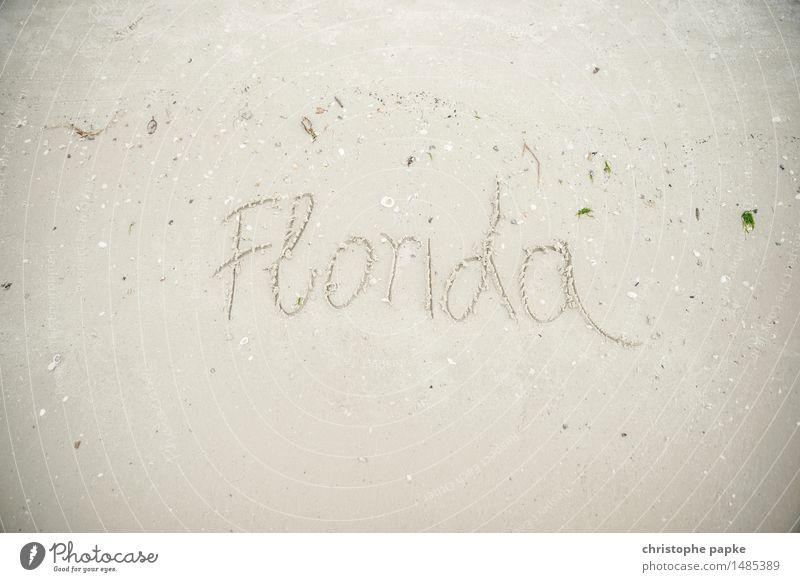 Welcome to ... Ferien & Urlaub & Reisen Tourismus Ferne Sommer Sommerurlaub Strand Meer Umwelt Natur Landschaft Sand Küste Seeufer Florida USA Schriftzeichen