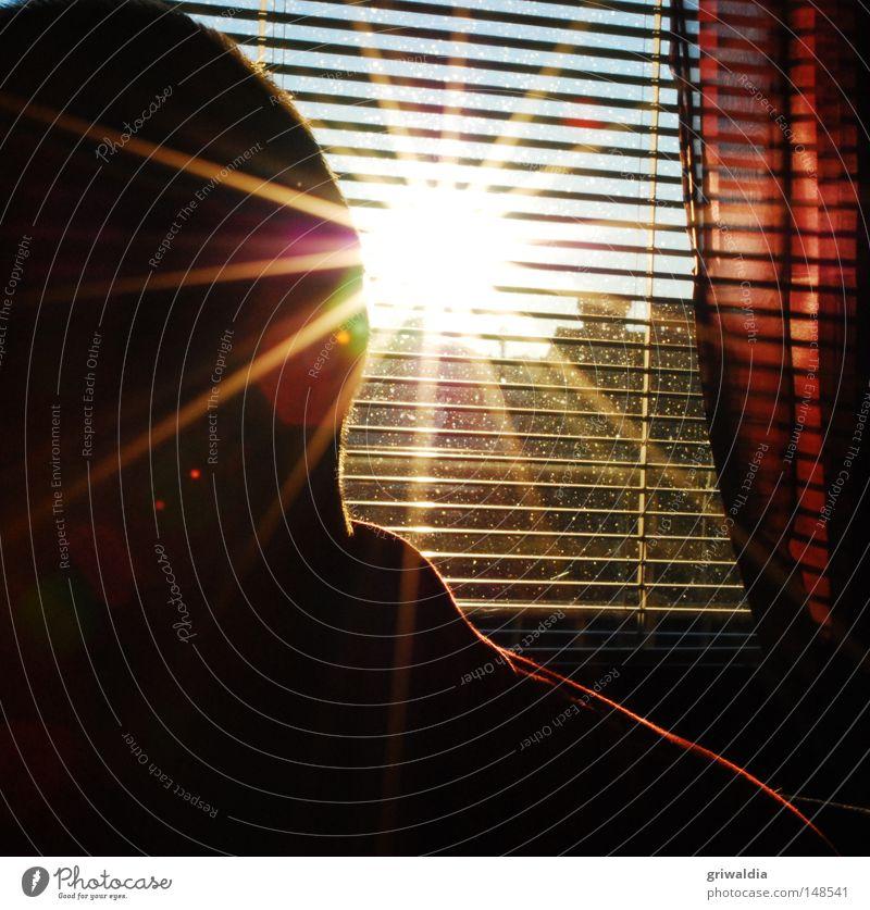 Sonnenstich gelb Fenster hell Kraft Jalousie