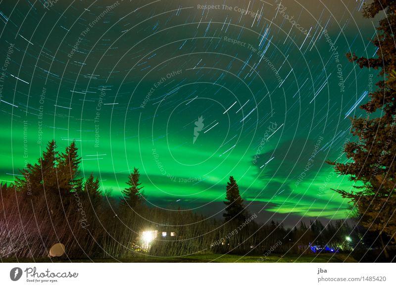 699 - Nordlichter-Nacht in Homer - Alaska 23 Himmel Natur Erholung Wolken Wald Leben Herbst Wiese Bewegung Freiheit Zufriedenheit Luft beobachten Ast Stern
