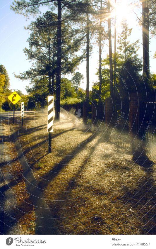 Hier regnets von unten! Himmel Baum Sonne Sommer Straße Herbst Wiese Regen nass Schilder & Markierungen Verkehr USA Rasen Amerika gießen rechts