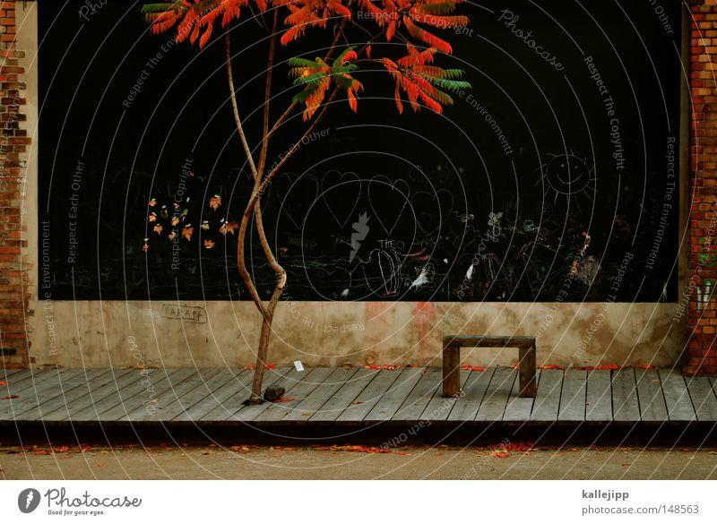 dauerparker Baum Pflanze schwarz Herbst Garten Holz Stein Park Landschaft Bank Kindheit Backstein Gemälde Flur Sitzgelegenheit Zeichnung