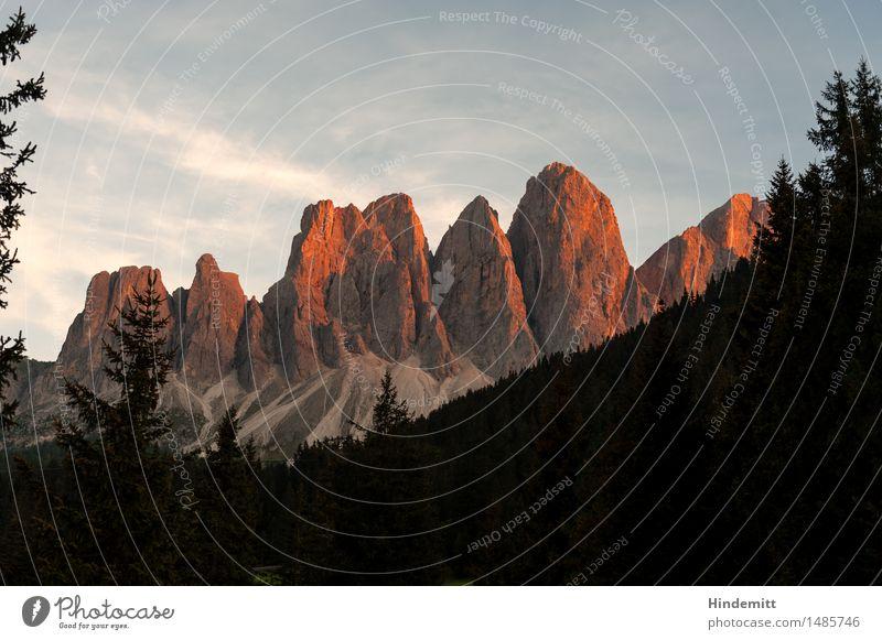 Alpenglüh Umwelt Natur Landschaft Pflanze Himmel Wolken Sommer Schönes Wetter Baum Wald Hügel Felsen Berge u. Gebirge Dolomiten Geislergruppe Gipfel stehen