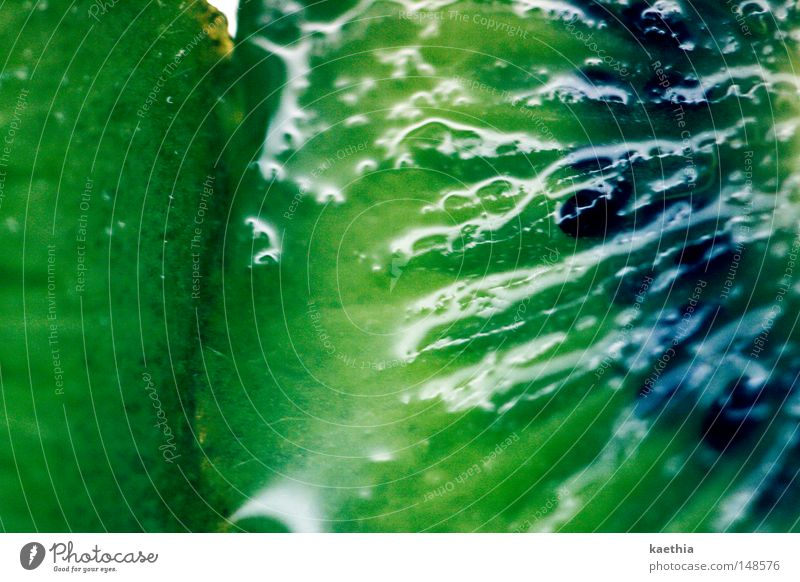 kiwi grün Frucht glänzend Lebensmittel nass frisch Ernährung Gesunde Ernährung Erfrischung lecker Hälfte Vitamin saftig Vegetarische Ernährung Makroaufnahme