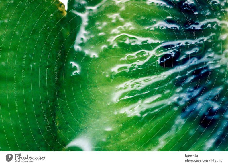 kiwi grün Frucht glänzend Lebensmittel nass frisch Ernährung Gesunde Ernährung Erfrischung lecker Hälfte Vitamin saftig Vegetarische Ernährung Makroaufnahme fruchtig