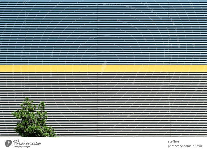 strich durch die rechnung   augenkrebs Baum Wand Linie gelb Lagerhalle Halle Industrie Natur Architektur Widerspruch unlogisch modern Kontrast