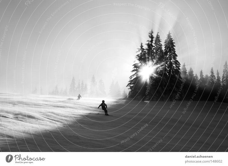 Wintersportweihnachtskarte Himmel Natur Ferien & Urlaub & Reisen weiß Sonne Baum Einsamkeit Wald kalt Berge u. Gebirge Schnee Hintergrundbild Deutschland Wetter