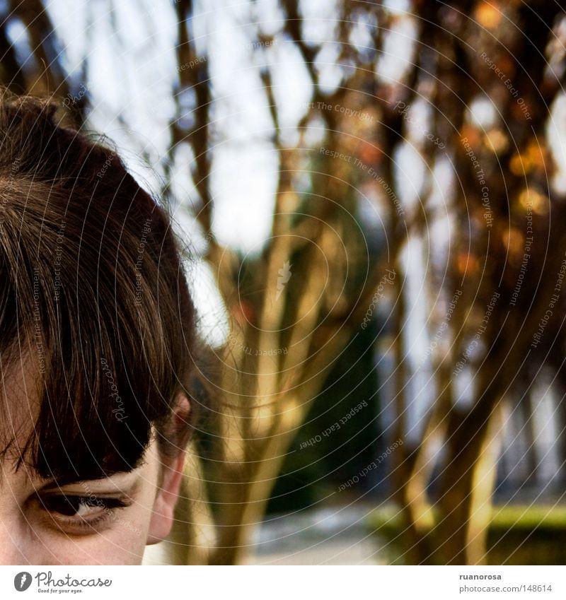 Frau Baum Auge Garten Park Behaarung Dienstleistungsgewerbe Ärger fremd