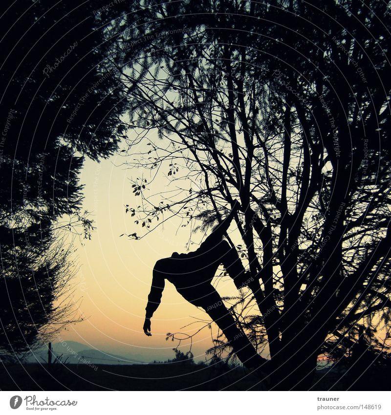 Hangman Farbfoto Außenaufnahme Experiment abstrakt Strukturen & Formen Abend Dämmerung Licht Schatten Kontrast Silhouette Reflexion & Spiegelung Sonnenstrahlen