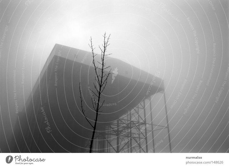 Großes Grau Halle alpin künstlich unnatürlich Klimawandel Kunst Kunstschnee Ebene Energie Winter Herbst grau Baum Ast zart Nebel hoch Stahl Konstruktion Metall
