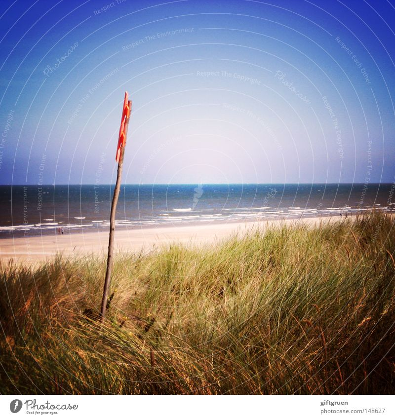 langeoog Meer Sommer Strand Ferien & Urlaub & Reisen Erholung Küste Deutschland Insel Tourismus Stranddüne Nordsee Langeoog Sandstrand Ostfriesland Ostfriese Ostfriesische Inseln