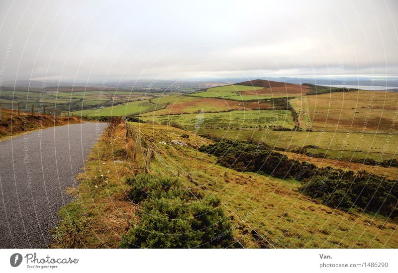 Ir(r)land Natur Landschaft Erde Himmel Wolken Herbst schlechtes Wetter Pflanze Gras Sträucher Hügel Straße grün Ferne Republik Irland Farbfoto mehrfarbig