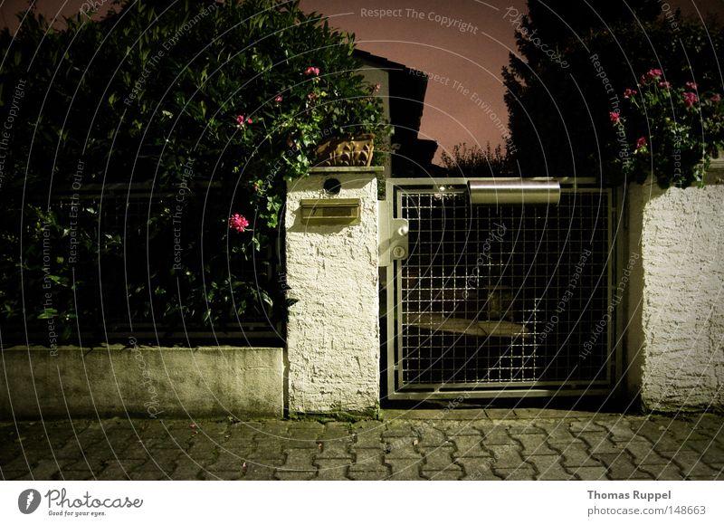 Eingang Haus verdeckt klein Tor silber Briefkasten Blume rosa violett grün Pflanze grau Bürgersteig Gitter Dämmerung Beton Pfosten weiß Tür Einsamkeit dunkel