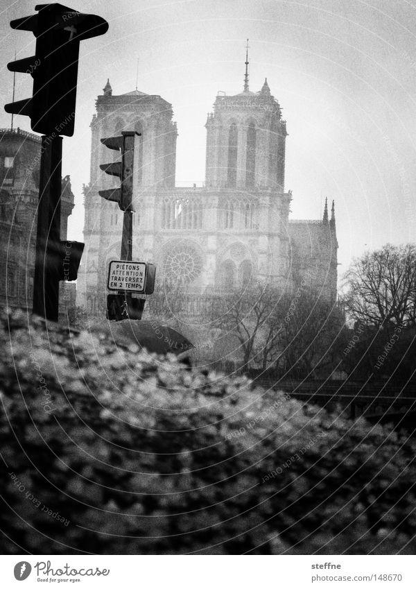 Hagel Notre-Dame Paris Frankreich Ampel Unwetter Regen Stimmung schwarz weiß bedrohlich Endzeitstimmung Apokalypse Wahrzeichen Denkmal Gotteshäuser Traurigkeit