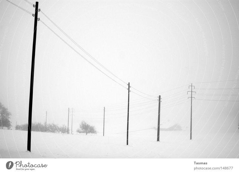 Verschneit Einsamkeit Winter Ferne Schnee grau trist Nebel Amerika Strommast Langeweile verloren Telefonmast Hochspannungsleitung Schneedecke zudecken Elektrizität