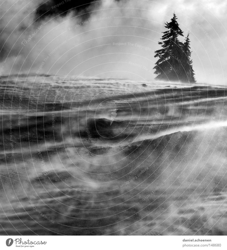 neue Weihnachtskarte 8 Himmel Natur weiß Baum Ferien & Urlaub & Reisen Winter Einsamkeit kalt Schnee Berge u. Gebirge Horizont Deutschland Wetter