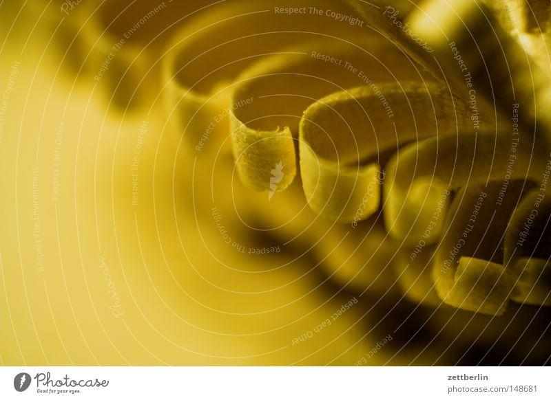 Saisongeschäft Weihnachten & Advent Baumschmuck Schmuck Holz Dekoration & Verzierung Reichtum schnitzkunst volkskunst holzschnitzerei vorweihnachtszeit