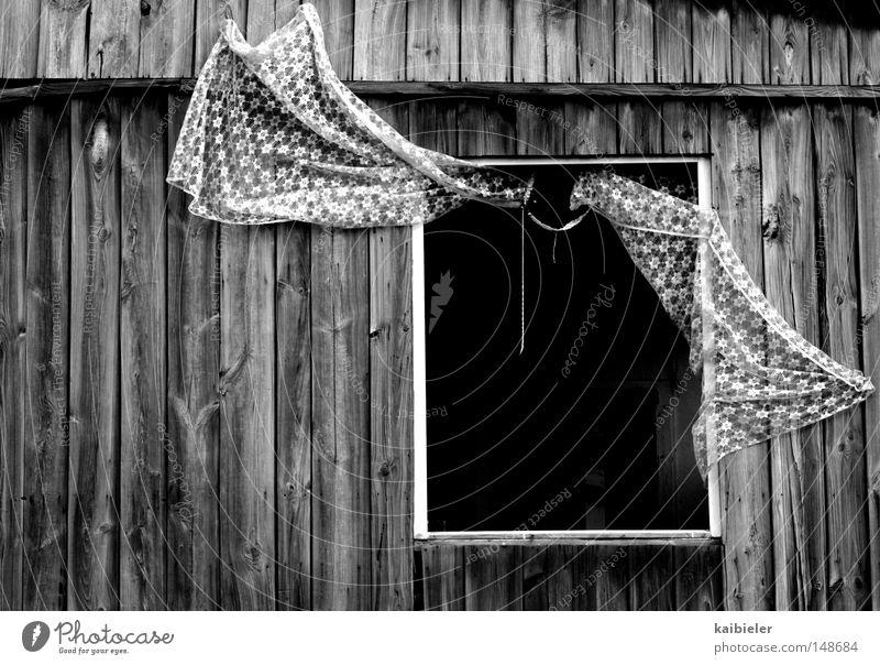 Tür zu! Einsamkeit Wand Fenster Holz Mauer Gebäude leer verfallen gefroren Hütte Leipzig Gardine Windzug lüften Baracke