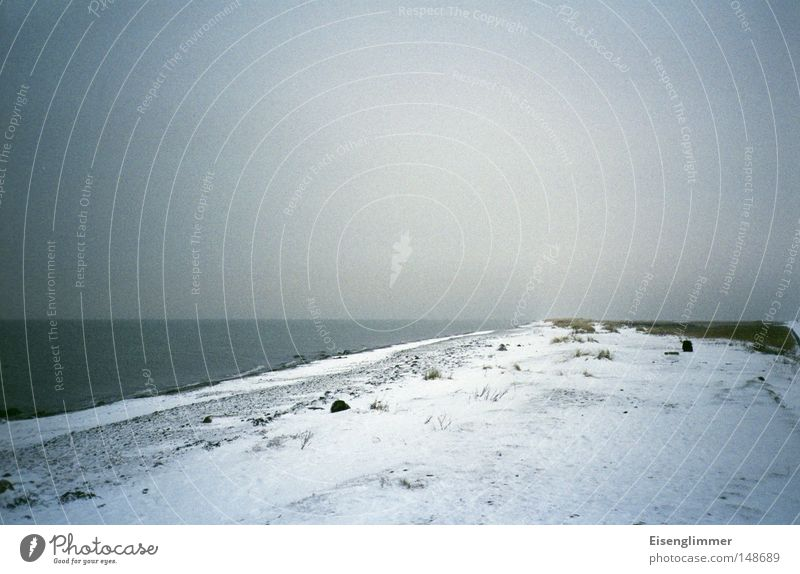 Ostsee-Kälte Wasser Meer Strand Winter dunkel Schnee Küste Eis Insel Frost Stranddüne Düne Ostsee Fehmarn
