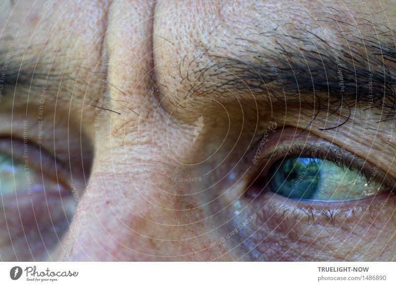 Knapp daneben | hinterrücks durch die Brust ins... Mensch Mann blau weiß dunkel schwarz Auge Leben Traurigkeit Gefühle Senior Denken braun maskulin trist