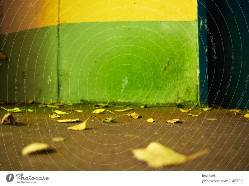 geh mir ausm blick du augenkrebsmacher! grün gelb blau Herbstlaub Mauer Wand Boden fallen liegen mehrfarbig knallig Linie