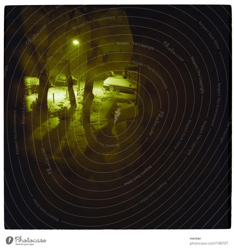 cast a damning light on bees round a honeypot Nacht dunkel Einsamkeit Straßenbeleuchtung Lampe Laterne Winter Licht Lampenlicht Schnee KFZ Fahrzeug Erfolg Sieg