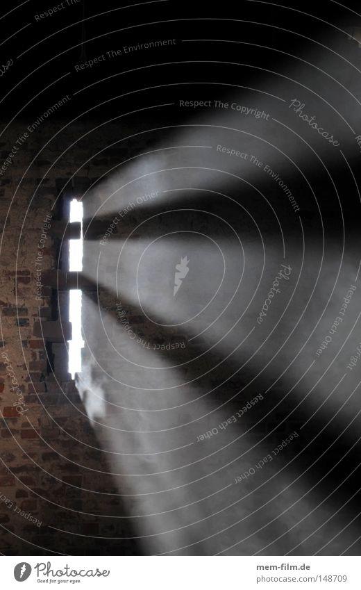 licht Licht Strahlung Lichtstrahl Nebel Staub geheimnisvoll Götter Sonne Sonnenstrahlen Esoterik Konzentration schön Vergänglichkeit akte x beam außerirdisch