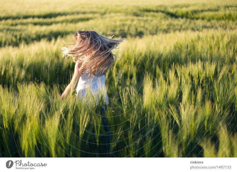 sommerlaune Mensch feminin Kind Mädchen Kindheit 1 3-8 Jahre Natur Sommer Schönes Wetter Feld entdecken Erholung Spielen Tanzen blond frei Fröhlichkeit frisch