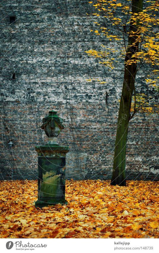 urnengang Hand Baum Herbst Leben Tod Religion & Glaube Rücken Nebel Finger Trauer Bildung Frieden Flüssigkeit Denkmal Jahreszeiten Statue