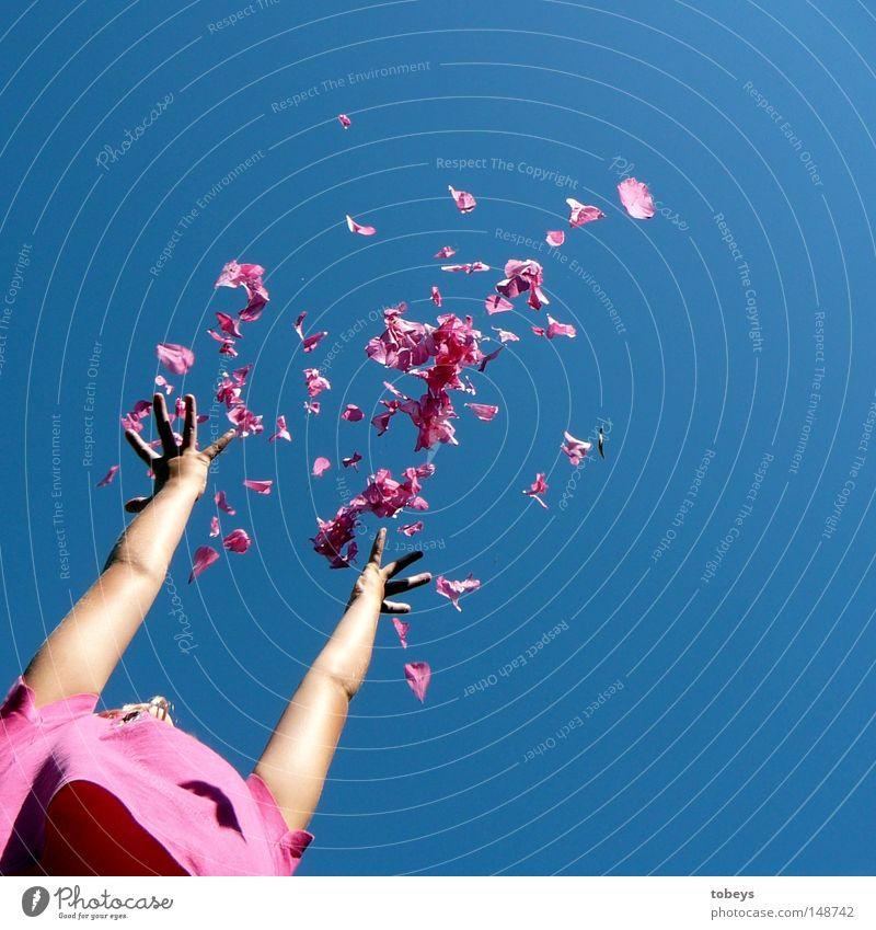 Finalisierung zur falschen Jahreszeit Himmel Hand Ferien & Urlaub & Reisen Sommer Freude Spielen Blüte rosa werfen