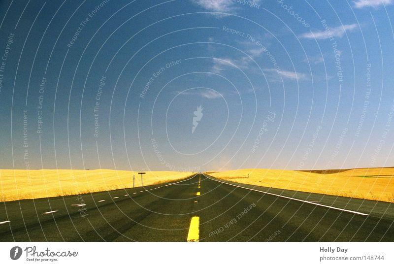 Bis zum Horizont und noch viel weiter Himmel blau Sommer Wolken gelb Ferne Straße Wege & Pfade Wärme Feld gold frei Verkehr leer Perspektive
