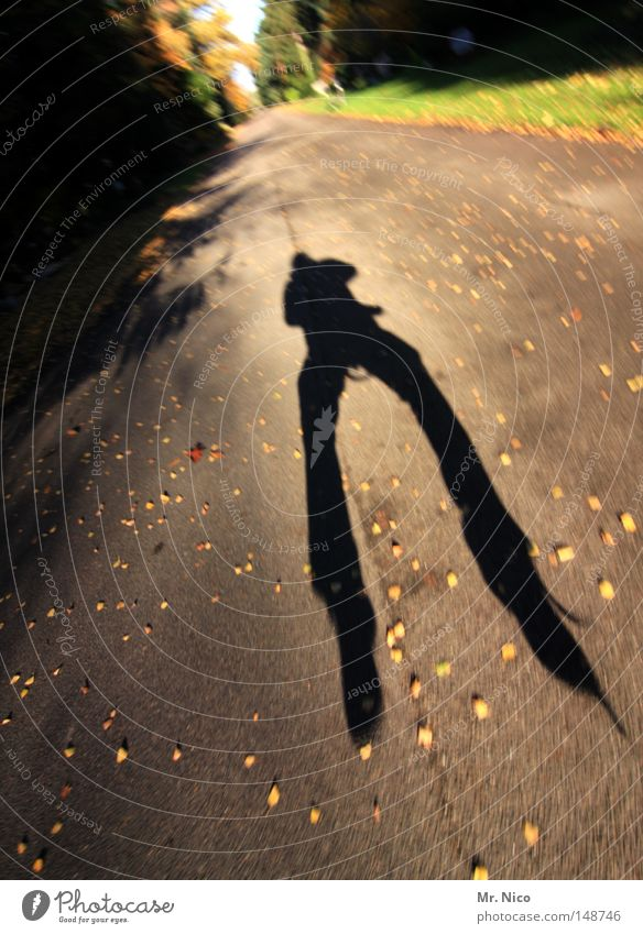 ! gnirps hüpfen springen Schatten Selbstportrait sprunghaft hoch Breitbeinig O-Beine Mann maskulin Kerl Mensch Aktion Unschärfe herbstlich Blatt Sonne Flugzeug