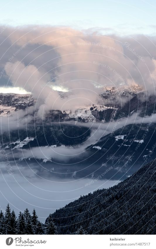 Wetterküche Natur Ferien & Urlaub & Reisen blau Baum Landschaft Wolken Winter dunkel Wald Berge u. Gebirge Schnee außergewöhnlich rosa Tourismus Nebel