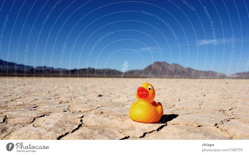 Desert Duck Badeente Ente Wüste Salzsee See Sand trocken Himmel USA Amerika Vogel Entertainment