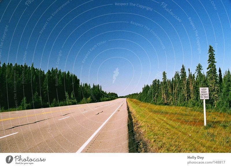 Langsame bitte rechts Himmel Baum blau Straße Wald Wiese Wege & Pfade Linie Schilder & Markierungen leer USA Streifen Unendlichkeit Zeichen Autobahn Amerika