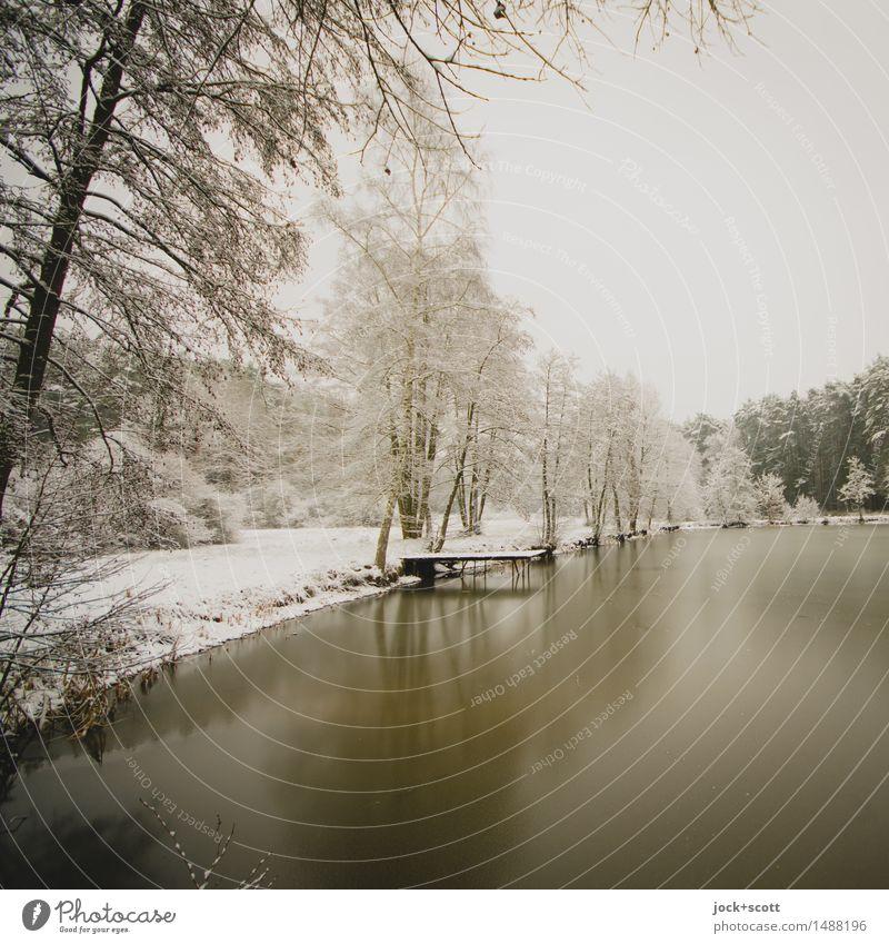 Still ruht der See im Winter Natur Eis Frost Schnee Seeufer Franken authentisch kalt Romantik ruhig Idylle Inspiration Klima Eislandschaft Kulturlandschaft